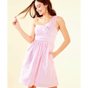 Lilly Pulitzer Pink Seersucker Addison Dress - 10